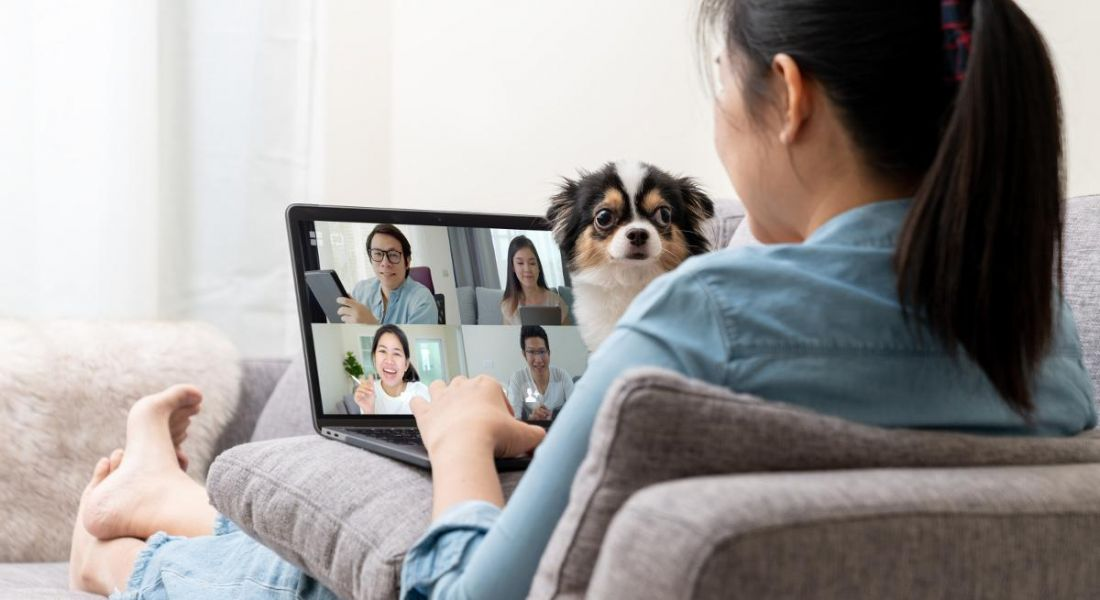 A woman on a sofa is talking to colleagues on a video call while her dog is disrupting the meeting.