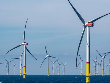 More than a dozen wind turbines at an offshore wind farm.