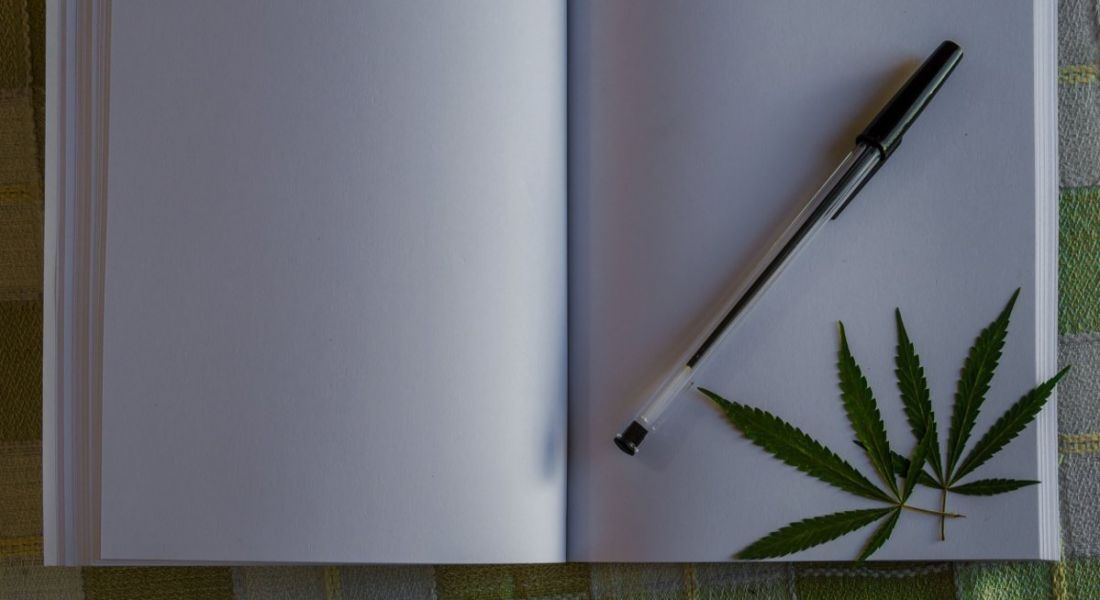 Blank notebook with cannabis leaves and black pen.
