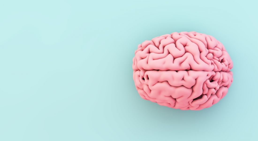 Minimalist image of pink brain on a blue background.