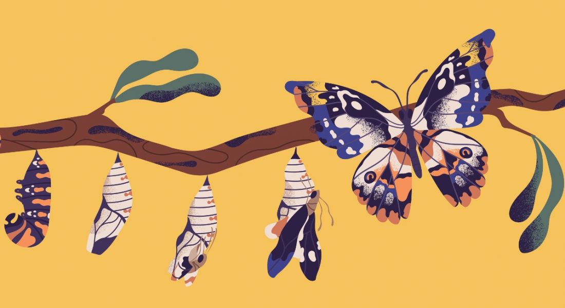 Illustration of a butterfly emerging from its cocoon against a yellow background, symbolising workplace digital transformation.