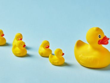 Row of toy rubber ducks following their mother duck against blue background. Similar to employees following their managers.
