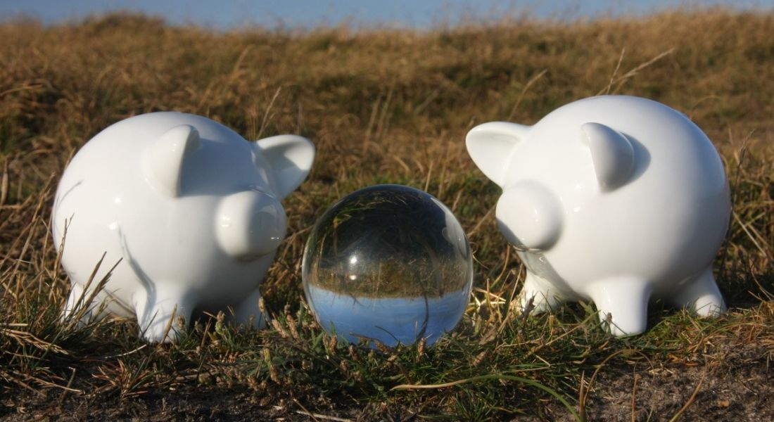 Two white piggy banks are standing on either side of a crystal ball in a field, symbolising 2021 salary predictions.