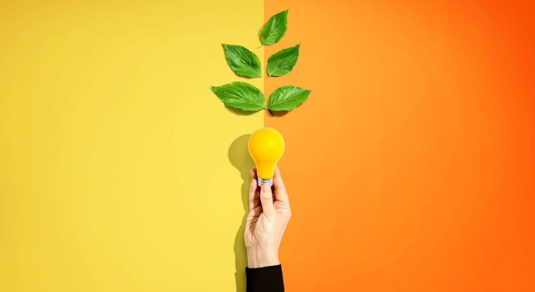 A hand is holding up a yellow lightbulb with leaves growing out the top against a yellow and orange background, symbolising inspiration and the role of a catalyst.