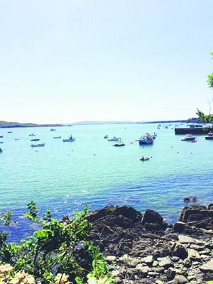 Schull Harbour: big plans for major marina.