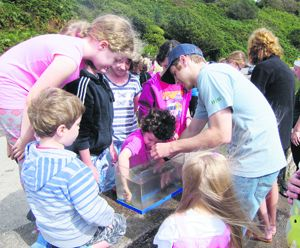 Children enjoying the Touch Tank event at Lough Hyne during last years Heritage Week