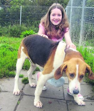 Ava Archbold from Clonakilty donated the last ¬100 of her confirmation money to help Rufus who needed an operation on his badly-infected ears.