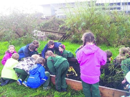 Pupils from the Gaelscoil in Skibbereen harvesting some of the fruits of the orchard