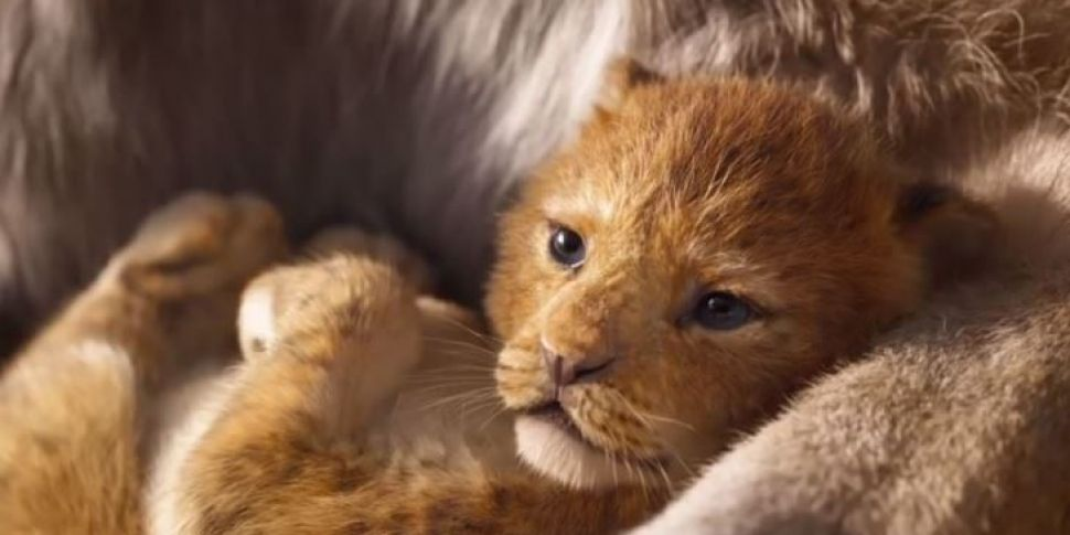 Lion King Trailer Becomes The...