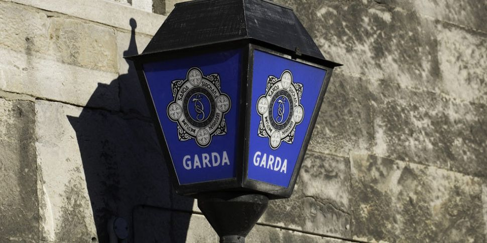 Gardaí Appealing For Help In F...