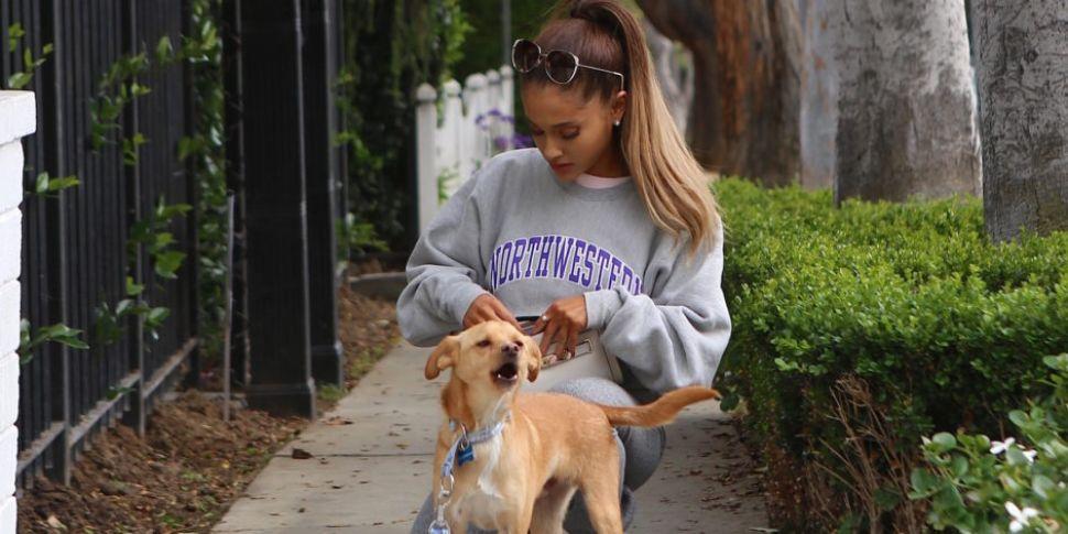 Ariana Grande Reportedly Flew...