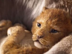 Lion King Trailer Becomes The Most Viewed Disney Trailer Ever