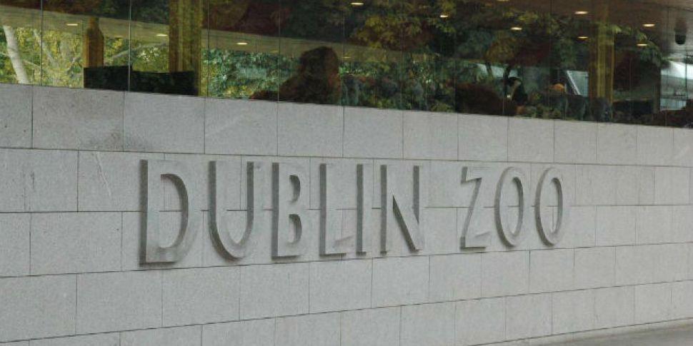 Dublin Zoo to donate 5,000 eur...