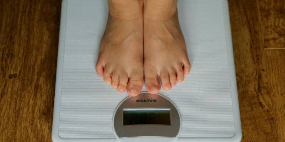 Experts Say Eating Wood Can Stop Obesity