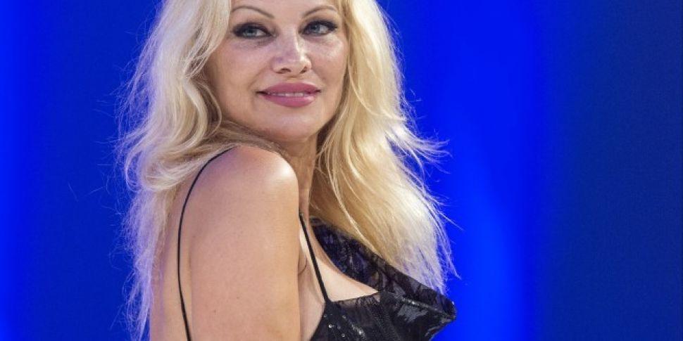 Pamela Anderson Has Called On Leo Varadkar To Ban Fur Farming