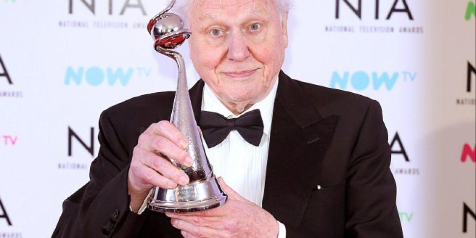 Sir David Attenborough To Present New Natural History Series