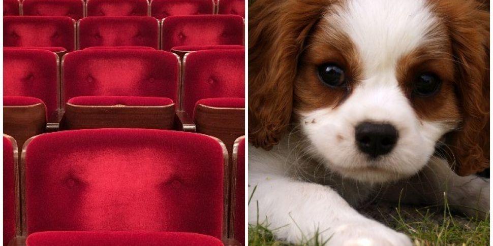 Lighthouse Cinema Holds Dog Fr...