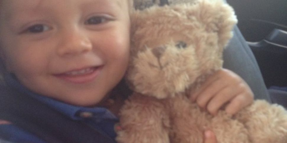 Appeal To Help Find Missing Teddy