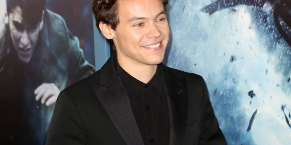 Harry Styles Is The Inspiration Behind New CBS Sitcom