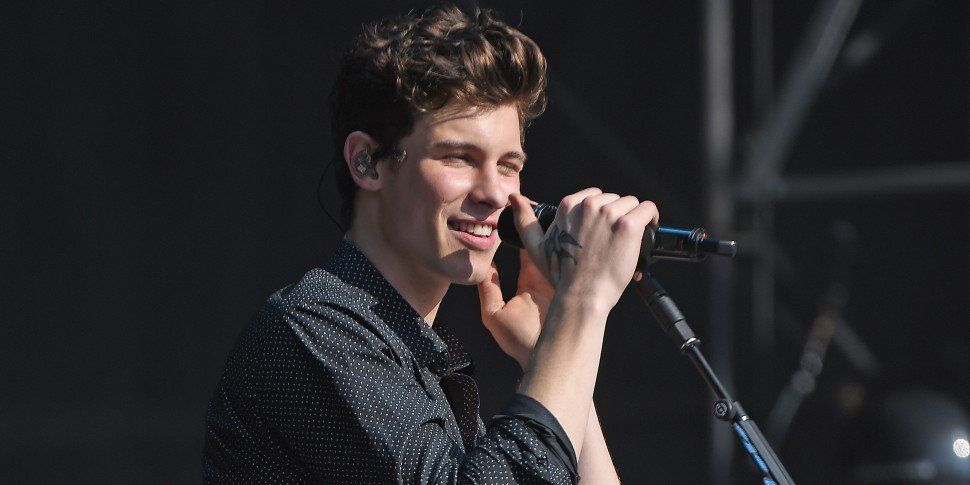 Shawn Mendes' Jump Off Stage Goes Terribly Wrong
