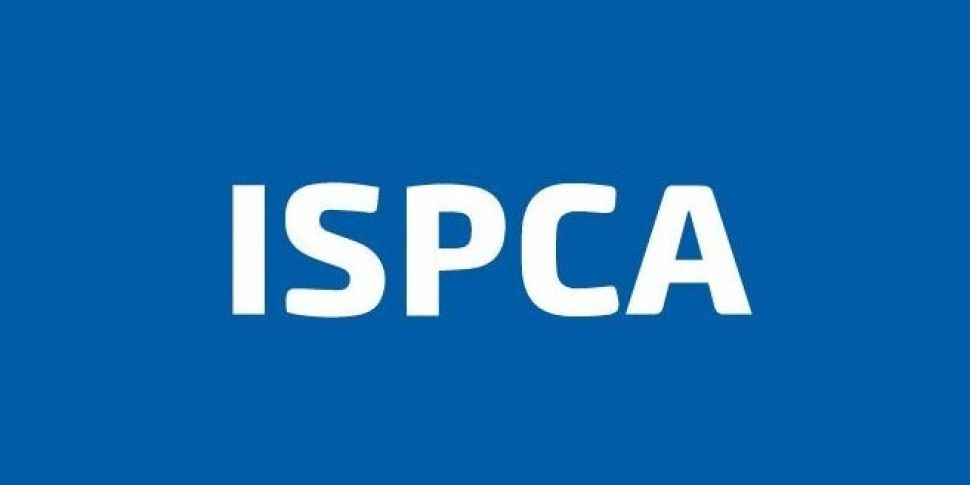 ISPCA find dead animals in str...