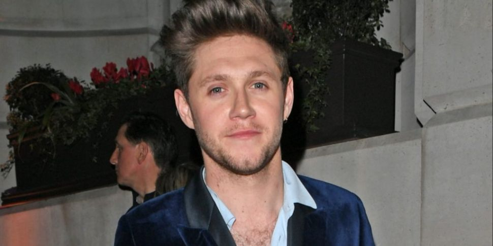 Niall Horan Admits He Doesn't...
