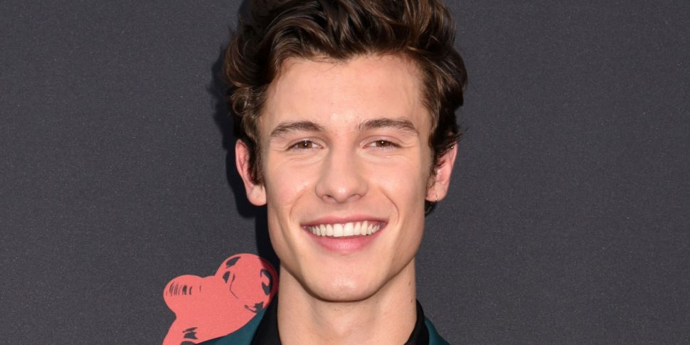 Shawn Mendes Reveals New Duet...