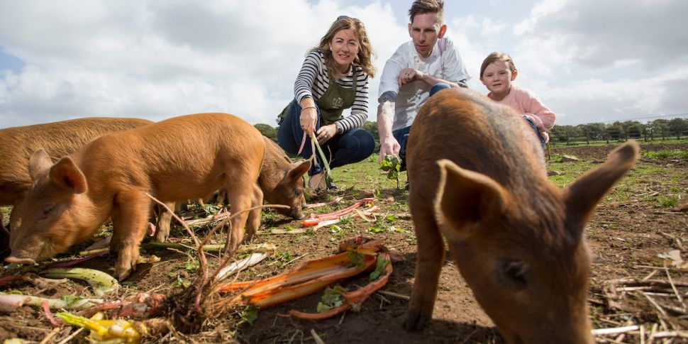Pigtown Festival Serves Up 'Th...