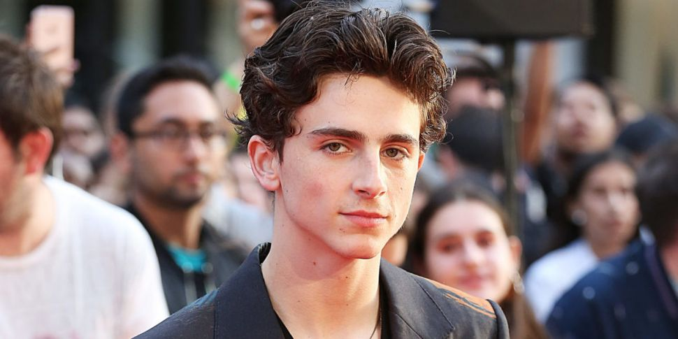 Our First Look At Timothée Cha...