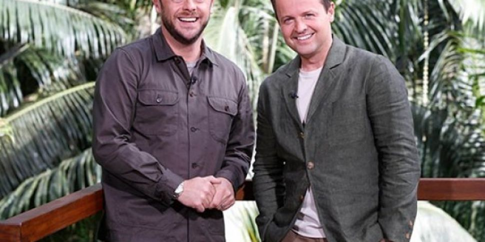 ITV Bosses Reveal Dec Will Get A New 'I'm A Celebrity' Co-Host