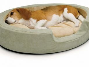 Heated Dog Beds Are Now A Thing