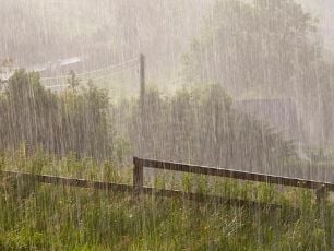 Storm Diana To Bring Heavy Wind And Rain