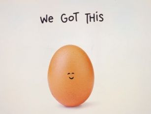 Instagram Egg Picture Appeared...