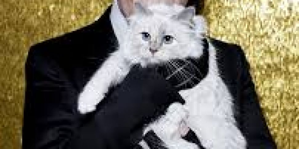 Karl Lagerfeld's Cat Set To To...