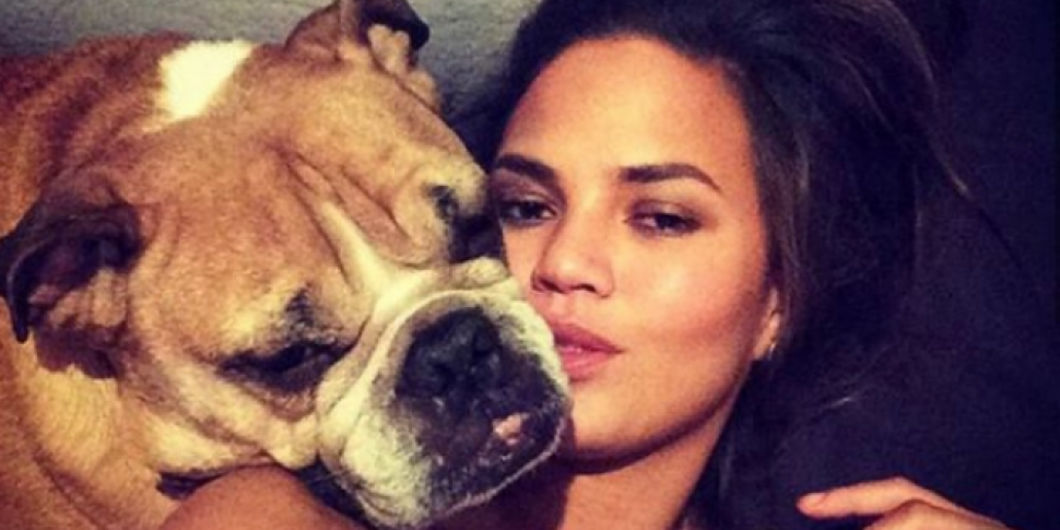 Chrissy Teigen Posts Tribute To Dog Puddy Who Passed Away