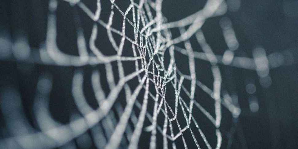 A Greek Town Is Completely Covered In Spider Webs