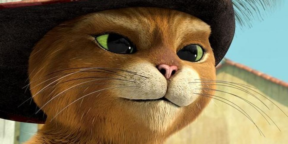 The Adventures Of Puss In Boots Now On Netflix Spinsouthwest