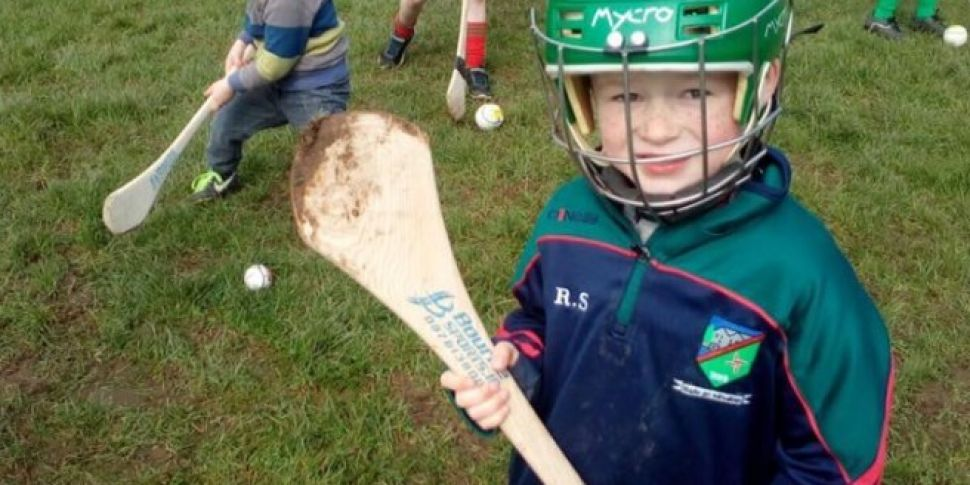 Hurling Seeds Sown In Kildare