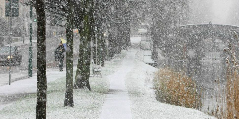 Sneachta Goes Viral - Here Are...