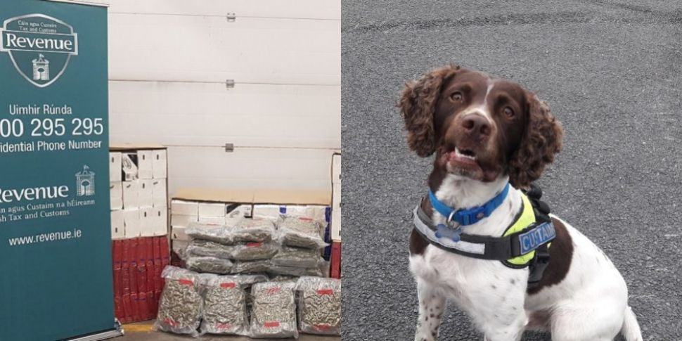 Detector Dog Helps Uncover Can...