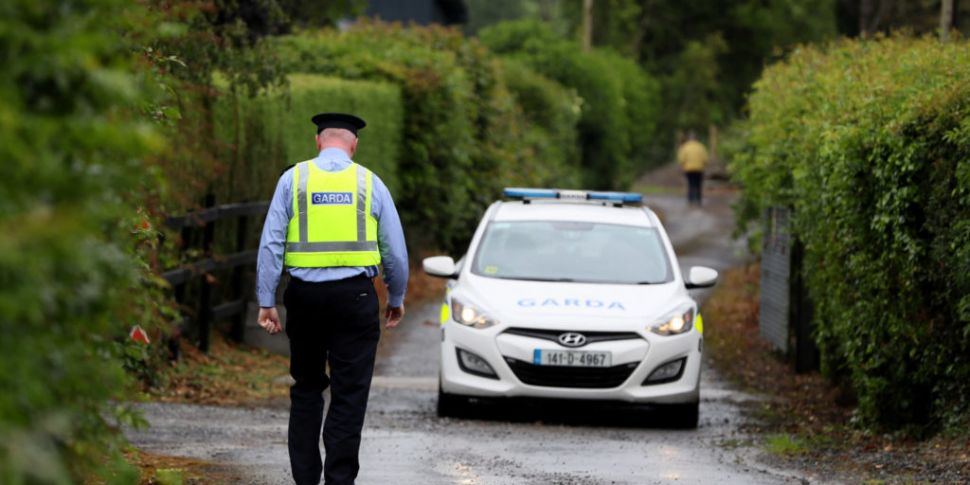 Aircraft In Fatal Kildare Cras...