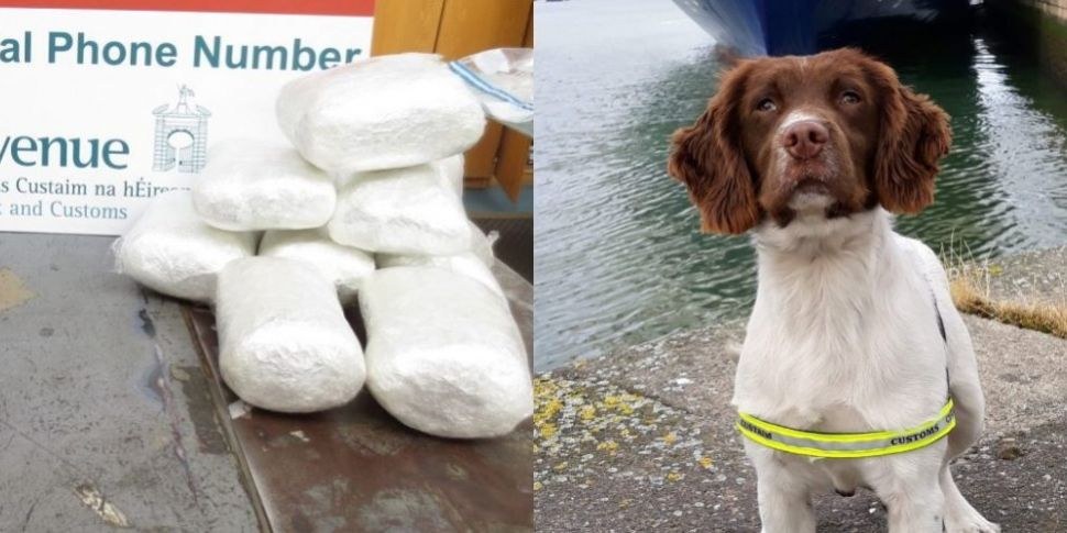 Detector Dog Sniffs Out Drugs...