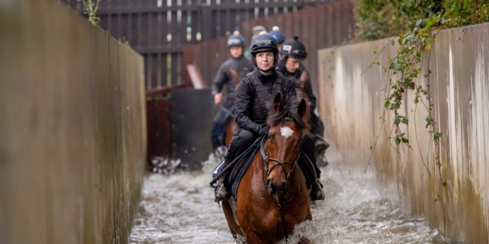 Grand National hero Tiger Roll...