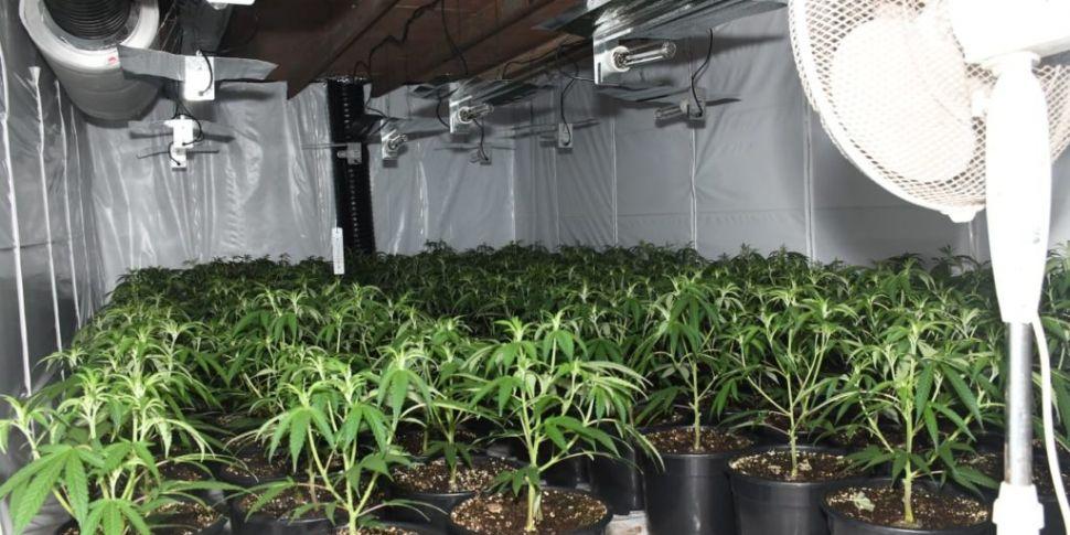 €400,000 Worth Of Cannabis Sei...