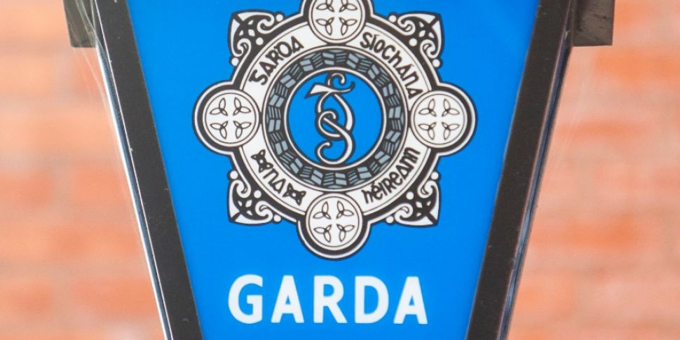 Gardai Seize Handgun And Ammun...