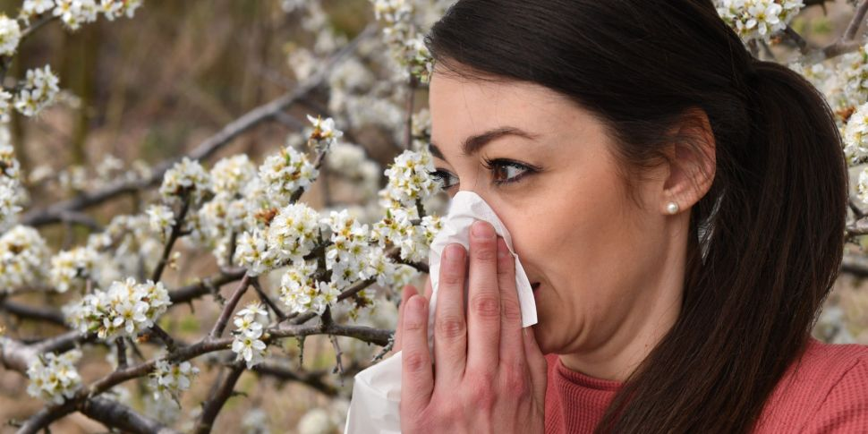 Do You Suffer From Hay Fever?...