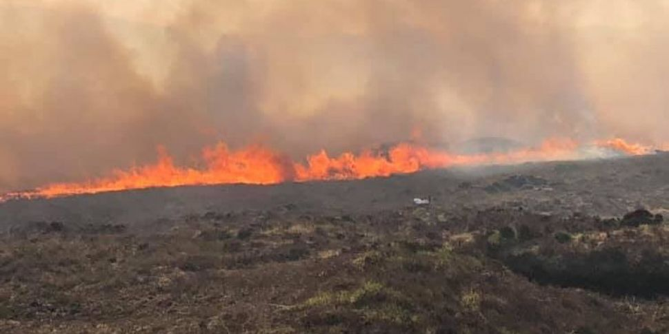 Major Gorse Fire Tackled in Co...