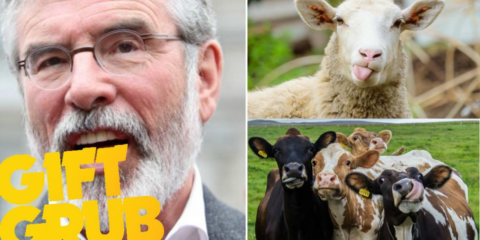 Gerry Adams & Co Reveal The Se...