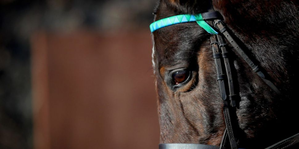 No End In Sight To UK Horserac...
