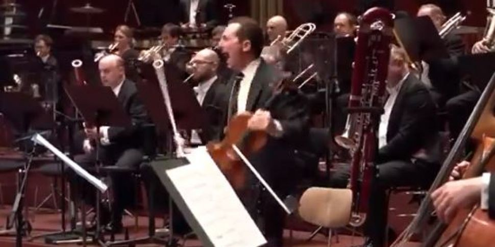 Violinist Just Starts Screamin...